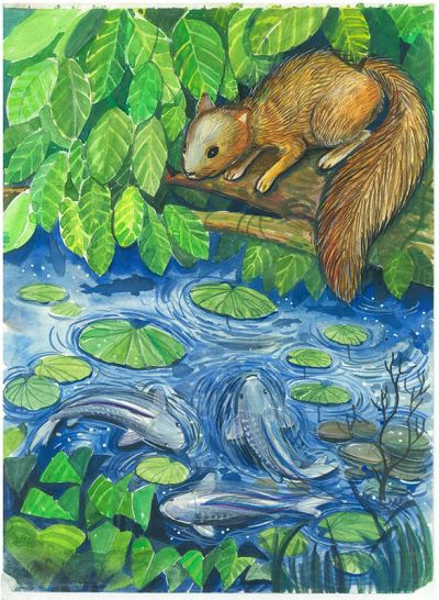 KS Poster Colour Sample - Squirrel And Fish In Pond